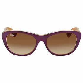 Ray Ban RB4227 619213 55    Sunglasses