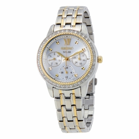 Seiko SNE874 Recraft Ladies Eco-Drive Watch