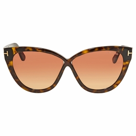 Tom Ford FT0511 52B Arabella Ladies  Sunglasses