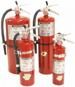 Buckeye Hand Held Portable ABC Fire Extinguishers