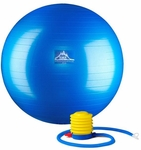 Professional Grade Stability Ball
