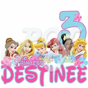 Disney Princess personalized birthday t-shirt