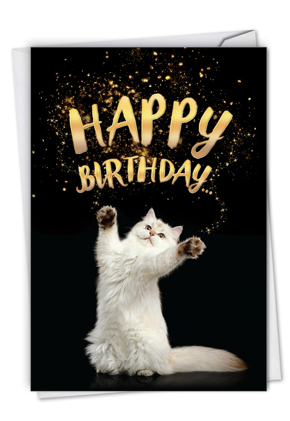 Stylish Birthday Pet Paper Card By NobleWorks Inc From NobleWorksCards