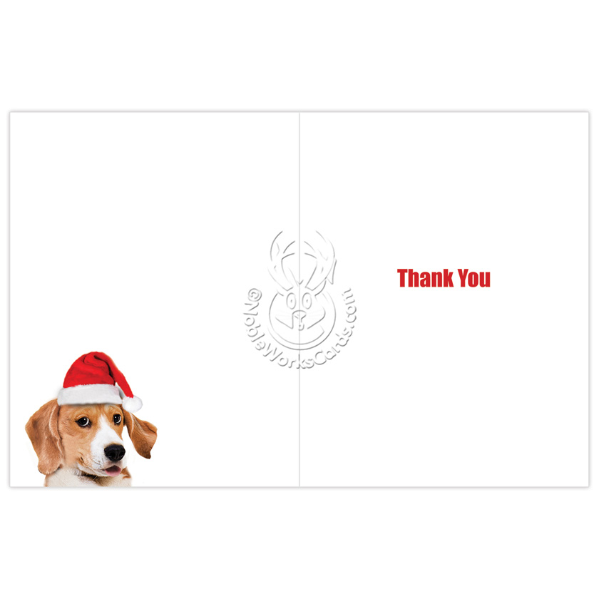 Very Christmas Dog Big Thanks Nobleworks By Design Christmas Thank You  ZS82