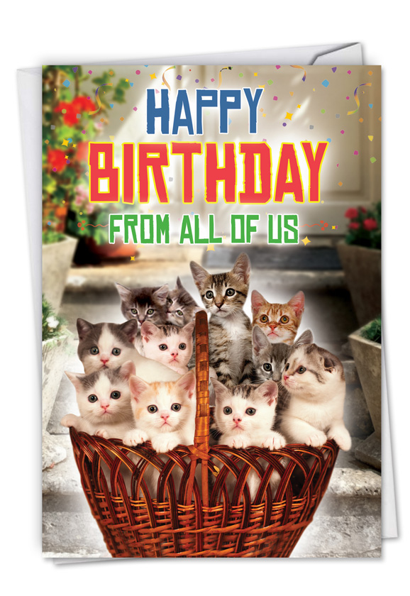 From All Us Cats Funny Birthday Greeting Card