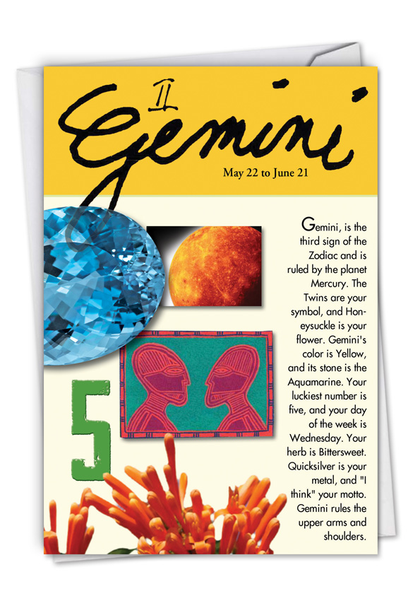 Funny birthday card for gemini nobleworks bookmarktalkfo Images