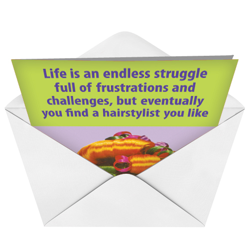 Hair stylist funny birthday greeting cardnobleworks funny birthday paper greeting card by ephemera from nobleworkscards hair stylist image 2 bookmarktalkfo Images