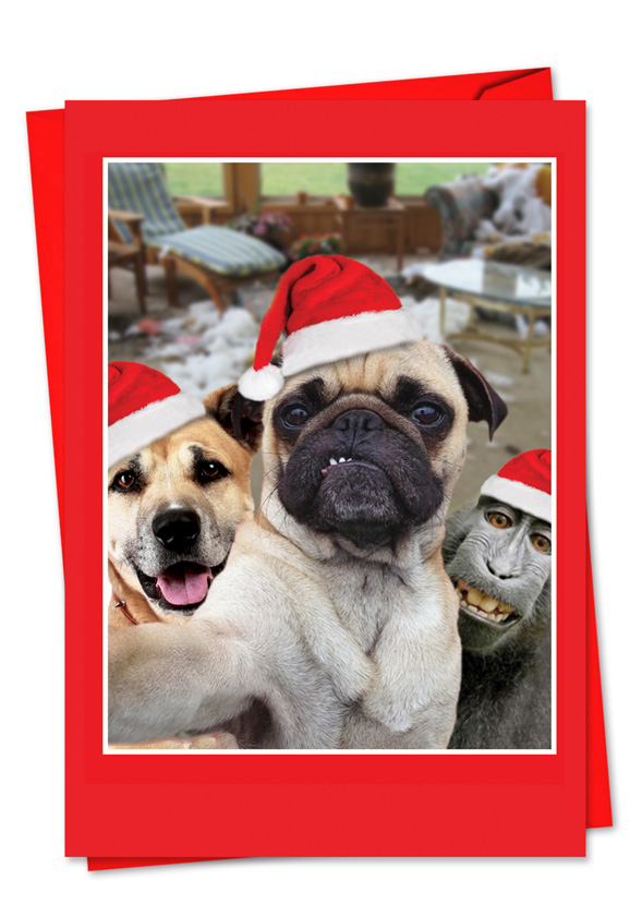Holiday animal selfie nobleworks by design christmas greeting card creative christmas printed greeting card from nobleworkscards holiday animal selfie m4hsunfo
