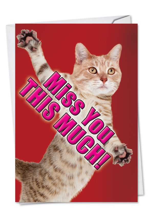 Miss you this much cat petigreet miss you greeting card nobleworks hilarious miss you greeting card from nobleworkscards miss you this much cat m4hsunfo