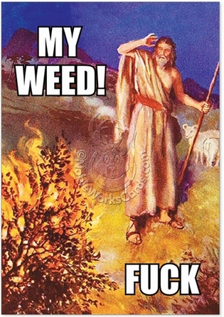 Religion, Jewish, Christian, Catholic, Moses Moses' Weed Funny Picture Birthday Paper Card Nobleworks