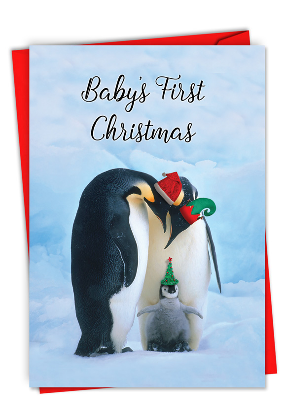 Penguins And Greetings Baby S First Christmas Christmas Card
