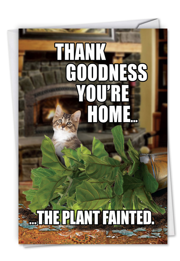 Plant Fainted Cat Petigreet Birthday Greeting Card By Nobleworks