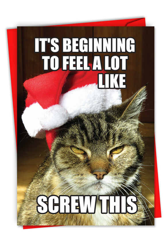 hilarious merry christmas greeting card from nobleworkscardscom screw this - Funny Merry Christmas Greetings