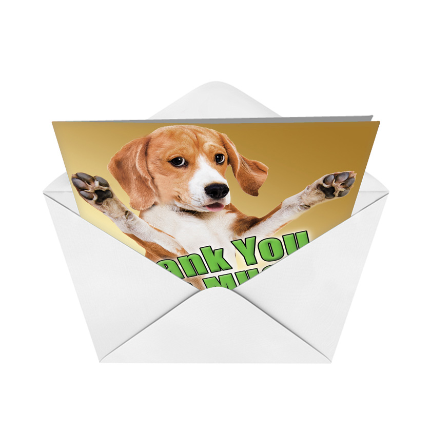 Brand-new Big This Much Dog Thank You Card Petigreet Thank You Card By  ZD79
