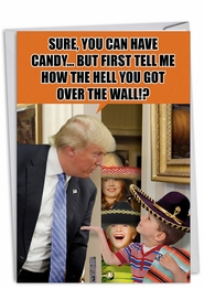 Trump Over The Wall Card