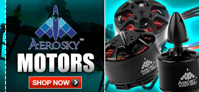 Aerosky Brushless motors
