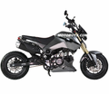 "Akuma Tourno X4 125cc Deluxe 4-speed Manual <b><font color=""red""><font size=""3"">FAST, FUN & NIMBLE - CALIF Street Legal!</font></font></b>"
