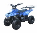 Coolster/ Tao SRX - 110cc ATV from Motobuys.com