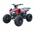 "Jet Moto Deluxe XL 125 Sport Quad -<b><font color=""red""><font size=""3"">#1 TOP CHOICE </font></font></b>"