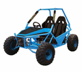 Jet Moto Raider 150cc Go Kart / Buggy - NOW with Upgraded Suspension!