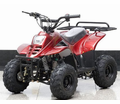 Kymoto Elite Z110 Deluxe Youth ATV-Quad - Automatic - The Ultimate Quality in Affordable ATV's - Free Shipping -