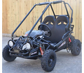 "Trailmaster XRX Mini Go Kart - <b><font color=""green""><font size=""2"">NOW Calif Legal</font></font></b>  -"