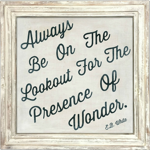"""36"""" x 36"""" Always Be On The Lookout Art Print With White Wash Frame by Sugarboo Designs"""