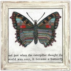 "36"" x 36"" Butterfly Art Print With White Wash Frame by Sugarboo Designs"