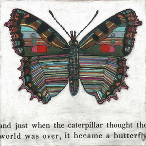 Butterfly Art Print Collection by Sugarboo Designs