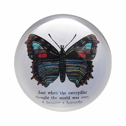 Butterfly Paper Weight (Set of 2) by Sugarboo Designs