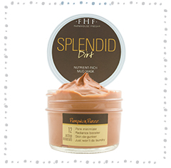 Splendid Dirt - Nutrient Mud Mask with Organic Pumpkin Puree
