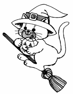 Cat on Broom