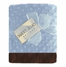 Designer Super Soft Blue and Brown Baby Boy Minky Dot and Satin Blankets by Sweet Jojo Designs