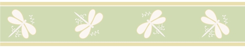 Green Dragonfly Dreams Baby, Childrens and Teens Wall Border by Sweet Jojo Designs - Click to enlarge