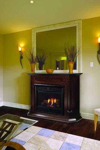 Majestic Chesapeake Cfx 32 In Vent Free Natural Gas Fireplace System With Dark Walnut Wall Cabinet