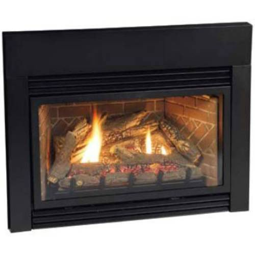 Empire Innsbrook Small Direct Vent Gas Fireplace Insert With Intermittent Pilot Dv25in73ln P