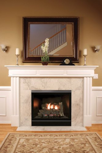Empire dvcx42fp91n tahoe luxury direct vent fireplace Luxury fireplaces luxury homes