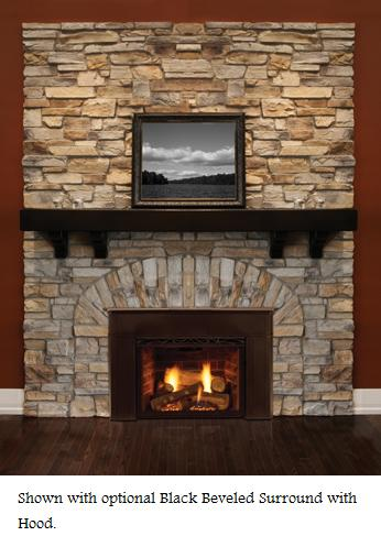 Majestic Topaz 20ildv Direct Vent Gas Fireplace Insert Natural Gas