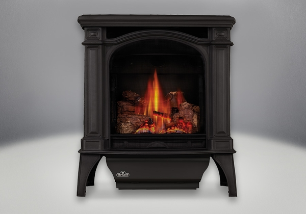 Napoleon Bayfield Direct Vent Cast Iron Gas Stove - GDS25N