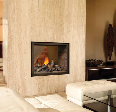 Napoleon bhd4 ascent multi view direct vent see thru gas for See thru fireplaces