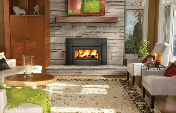Napoleon epi3c wood burning contempory black front Contemporary wood fireplace insert