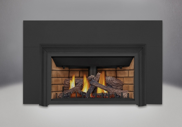 Napoleon GDIZC Direct Vent Gas Fireplace Insert - GDIZC-NSB This easy to install fireplace insert is efficient and effective. With over 24
