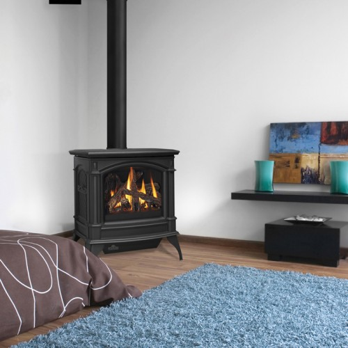 Napoleon Gds60 Cast Iron Gas Stove With Direct Vent B Vent