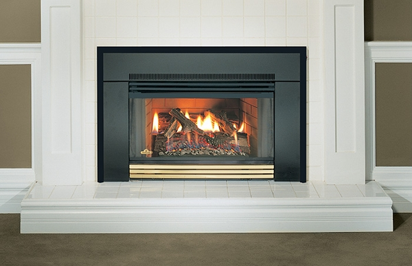 Napoleon gi3600 natural vent gas fireplace insert gi3600 for Contemporary fireplace insert