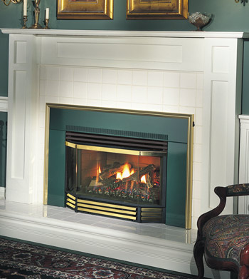 place product the fireplace insert f gas trv