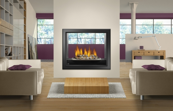 Napoleon Hd81 High Definition See Thru Direct Vent Gas