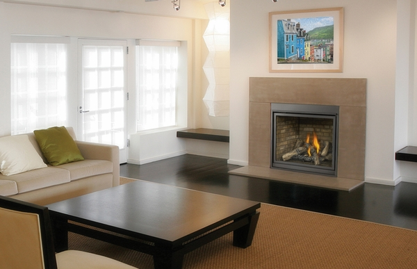 HDX40 Direct Vent Clean Face Gas Fireplace with Black Doors ...