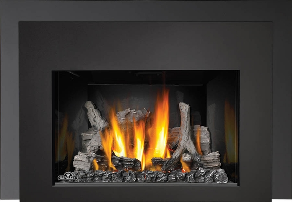 Napoleon Ir3n 1sb Basic Fireplace Insert With Radiant Ironwood Log Set