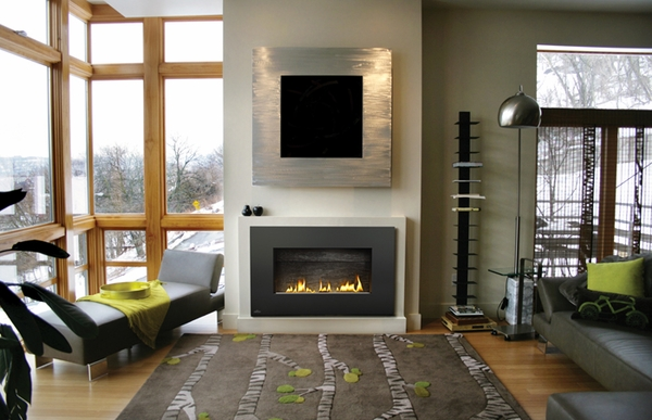 napoleon whd31nsb plazmafire direct vent wall mounted gas fireplace