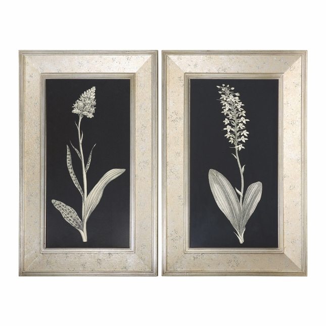 Antique Floral Study Set of 2 Framed Art 41529